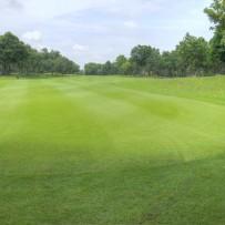 Kom ud og spil golf i Kolding